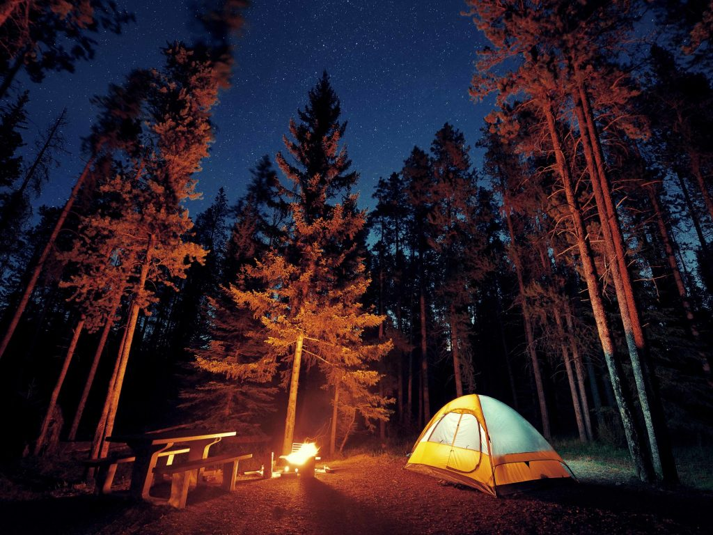 Camping for Beginners: Everything First-Timers Need to Know