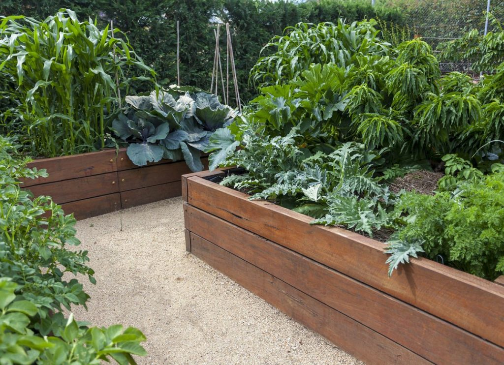 Best Simple Garden Tips and Ideas