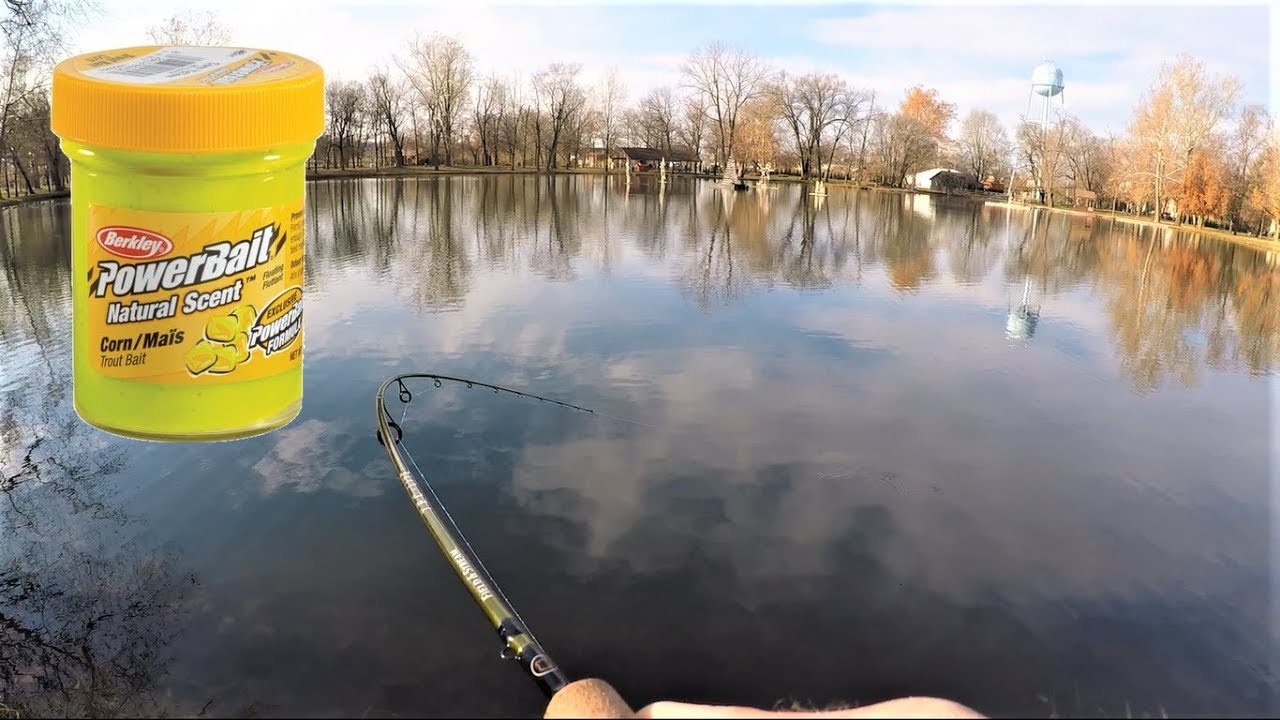 How to catch lake trout with Powerbait