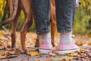 Why is my dog always under my feet